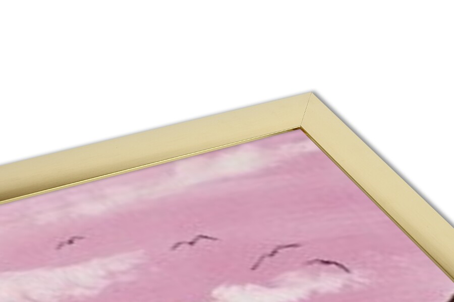 Pink Venice Art Print