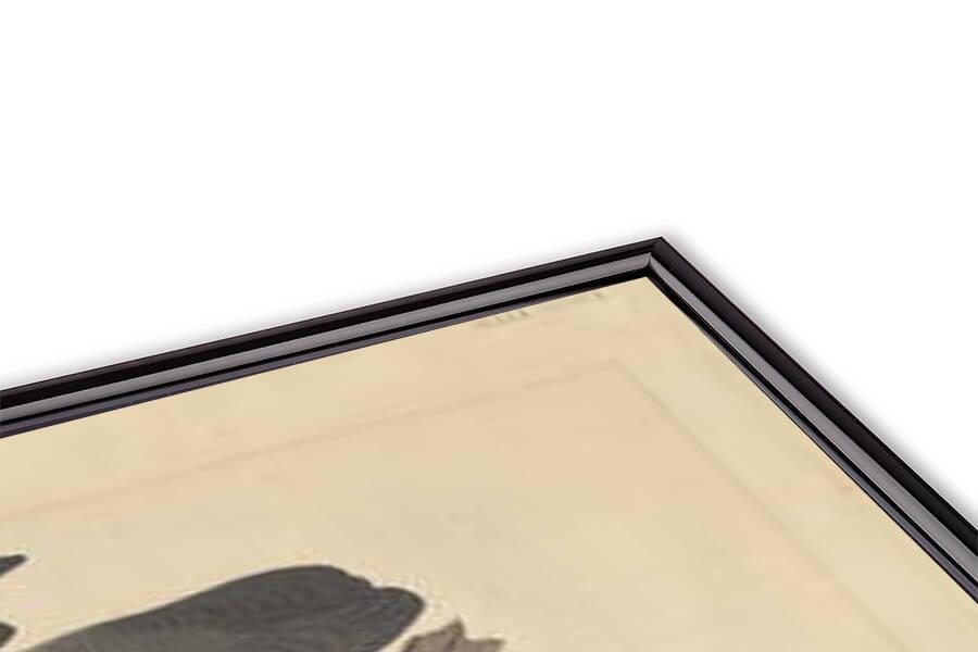 Fine Art Print Red-breasted Merganser, 1838