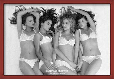 Sleeping beauties - Tanya Chalkin Poster