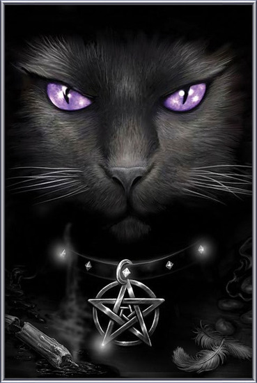 Magical cat Framed Poster
