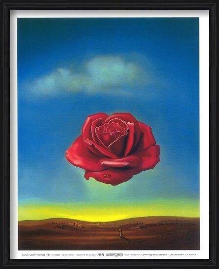 Meditative Rose, 1958 Art Print