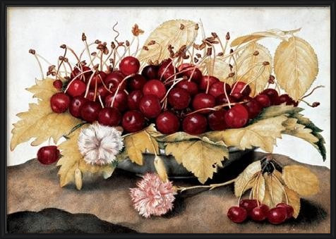 Cherries and Carnations Art Print