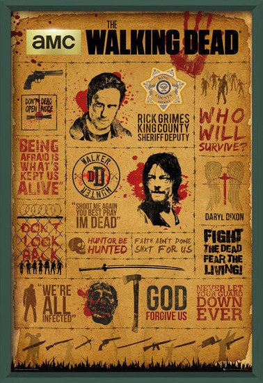 Walking Dead - Infographic Poster