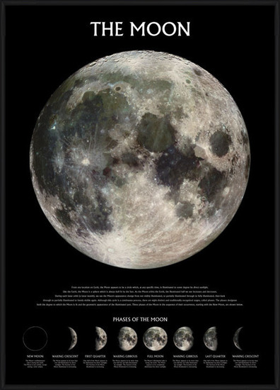The moon – stage of the moon Poster