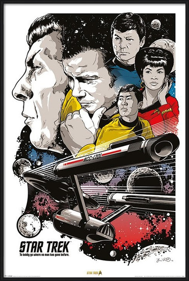 Star Trek - Boldly Go  50th Anniversary Poster