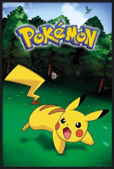 Pokemon - Pikachu Catch Poster