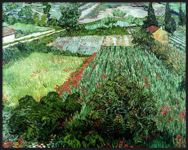 Fine Art Print Field with Poppies, 1889
