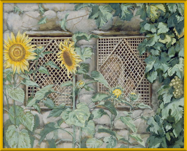 Fine Art Print Jesus Looking through a Lattice with Sunflowers, illustration for 'The Life of Christ', c.1886-96