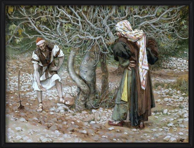 Fine Art Print  The Barren Fig Tree, illustration for 'The Life of Christ', c.1886-94
