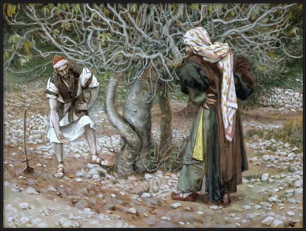 Fine Art Print The Barren Fig Tree, illustration for 'The Life of Christ', c.1886-94