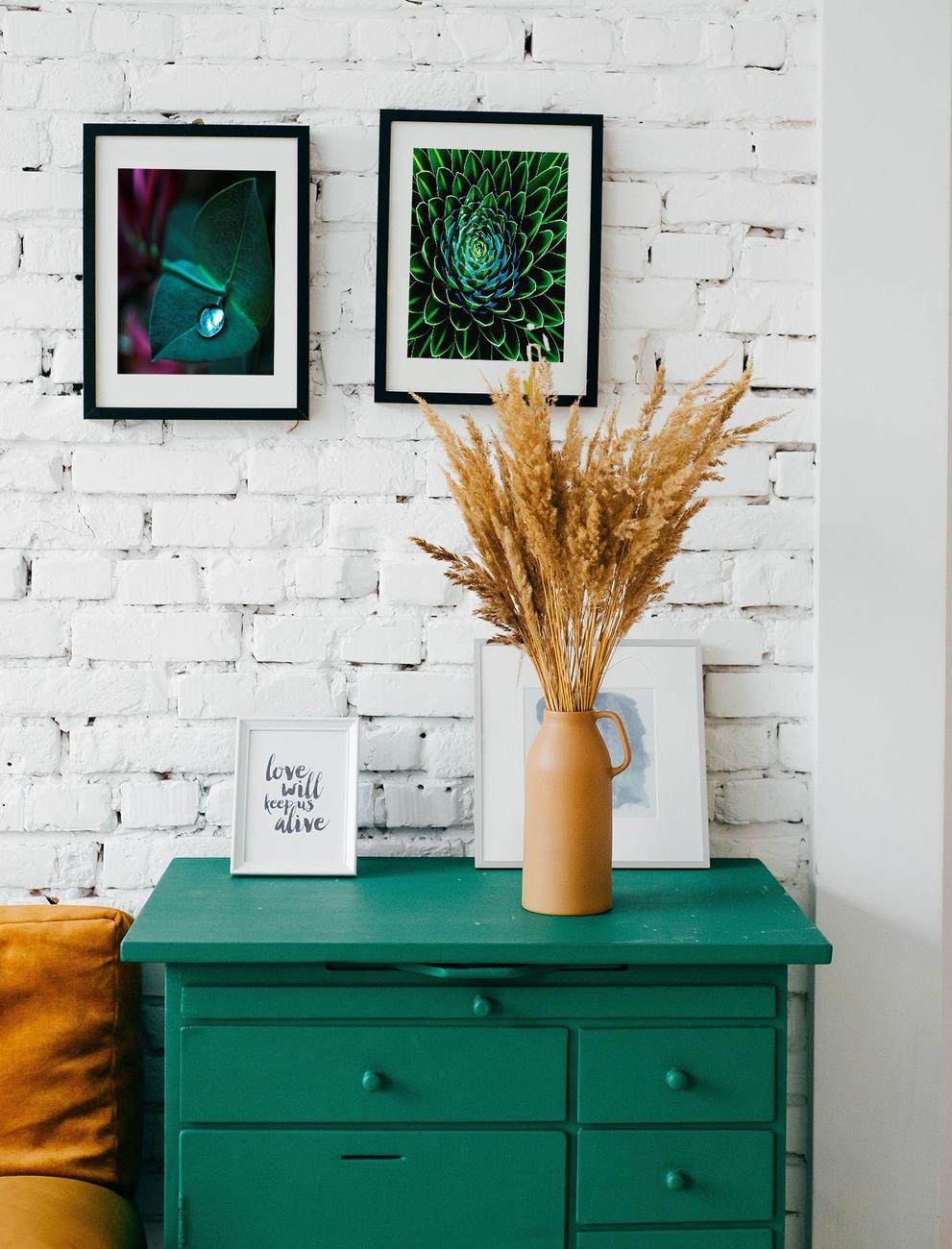 Art Photography Succulent