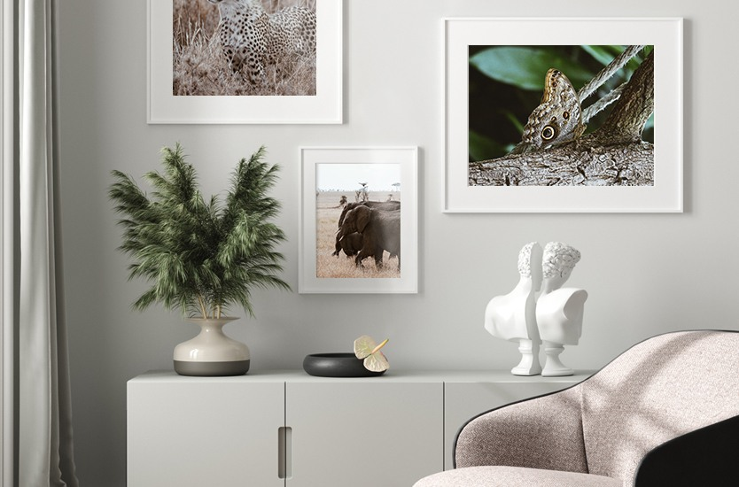 Art Photography Camouflaged butterfly
