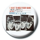 BEATLES - i want to hold your hand