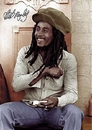 Bob Marley - rolling 2