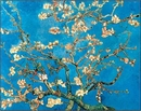 Almond Blossom - The Blossoming Almond Tree, 1890