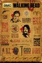 Walking Dead - Infographic