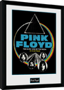 Pink Floyd - Dsom World Tour